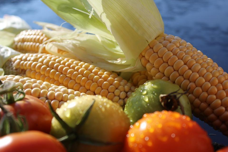 corn-1712731_960_720