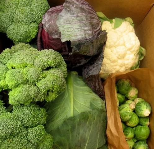 cruciferous veggies with broccoli