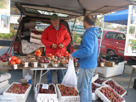 farmer-holland-sells-his-heirloom-apples-and-fresh-christmas-trees-at-bluebird-market-and-holland-apple-farm-on-jeff-davis-road (1)