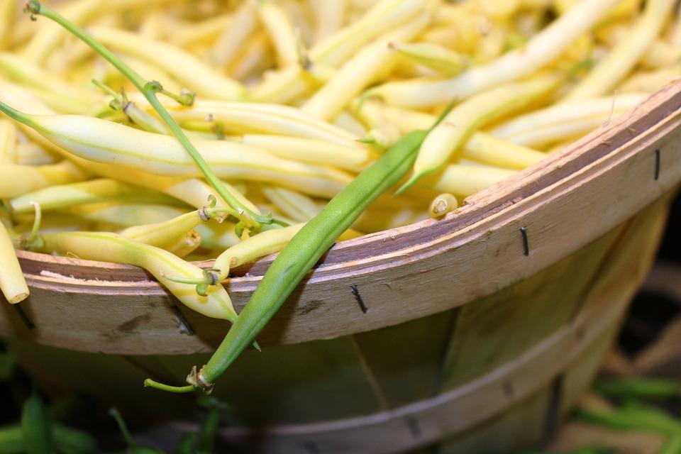 green-beans-938937_960_720