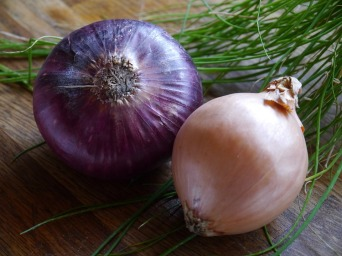 onion-498732_960_720