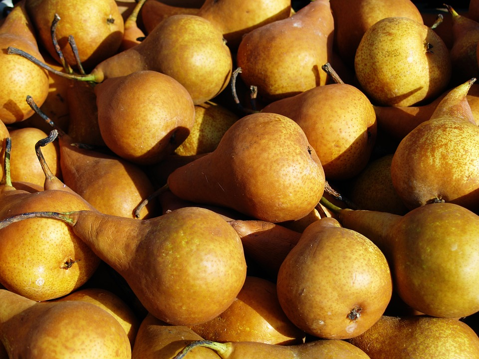 pear-1580571_960_720