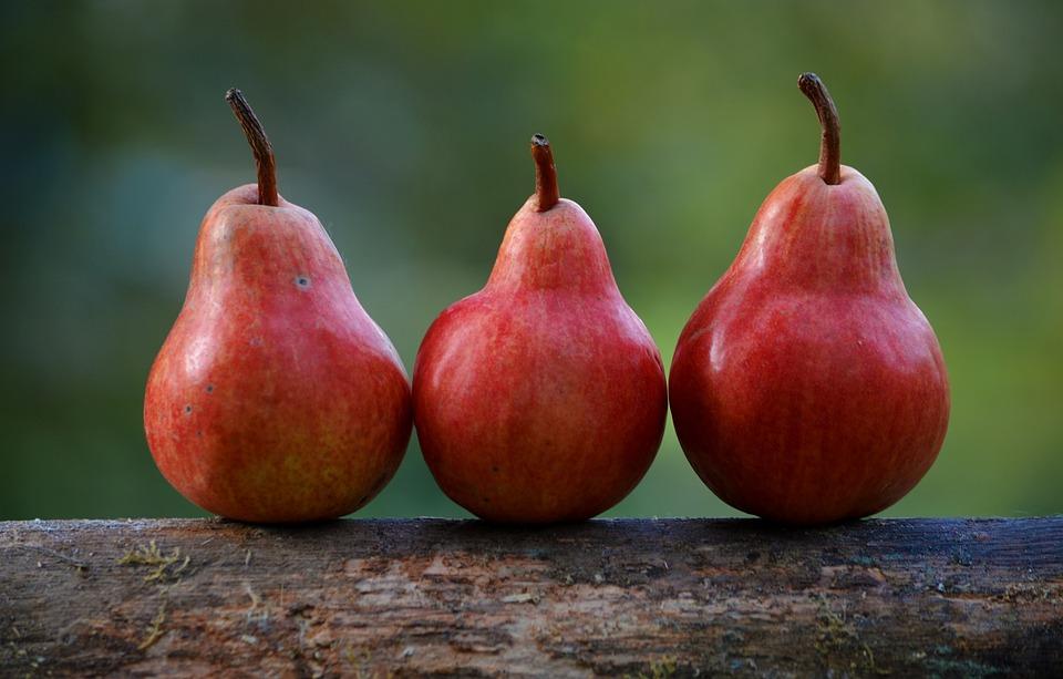 pears-1209915_960_720