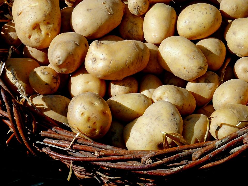potato-1700583_960_720
