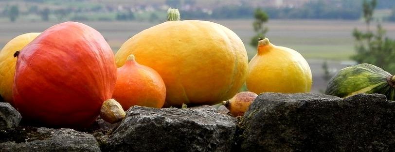 pumpkins-1719343_960_720