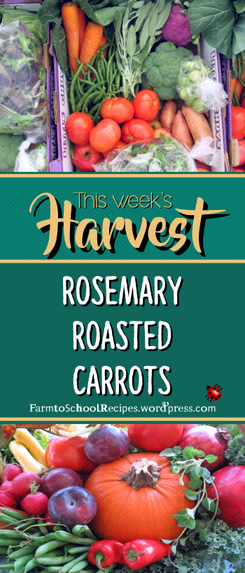 recipe of the week logo pics banner