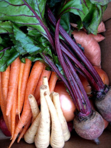 January 19, 2012 Root Veggie Shares