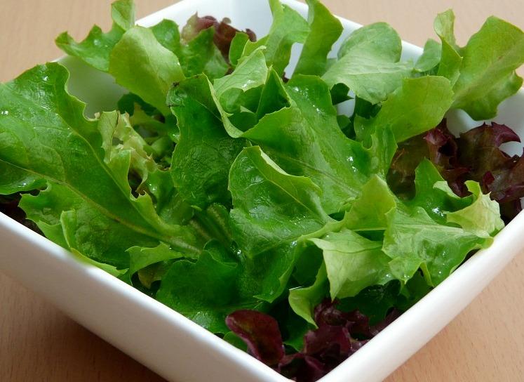 salad-164685_960_720