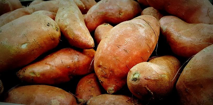 sweet-potatoes-1310287_960_720