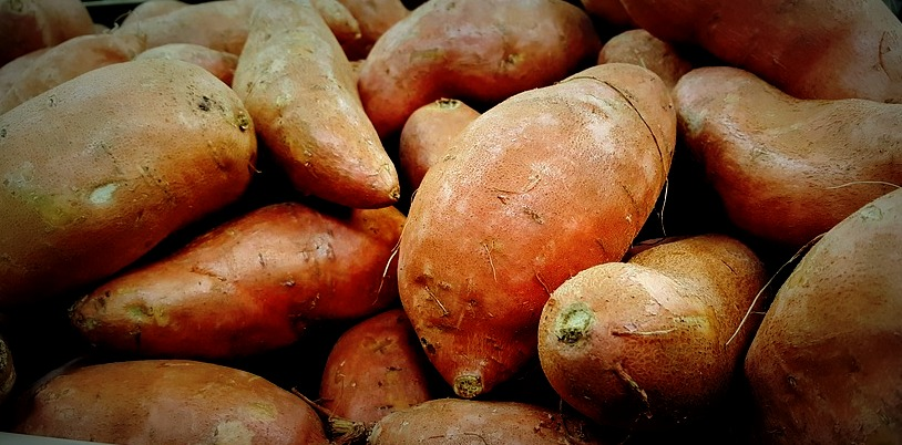 sweet-potatoes-1310287_960_720