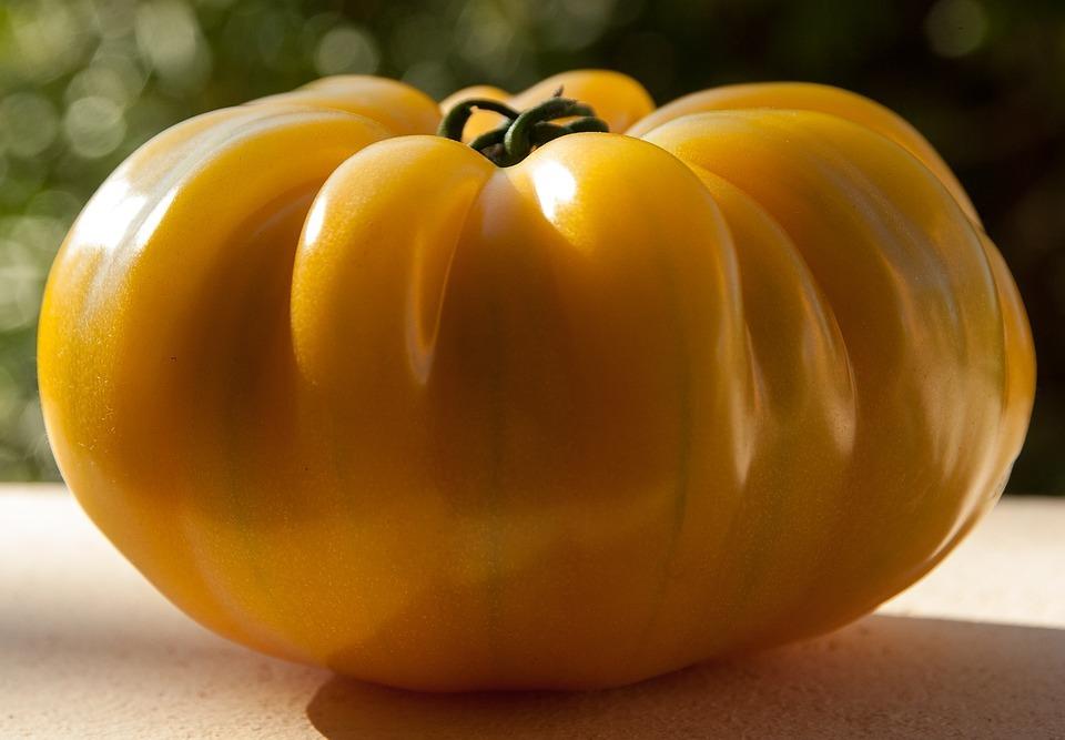 tomato-1312526_960_720