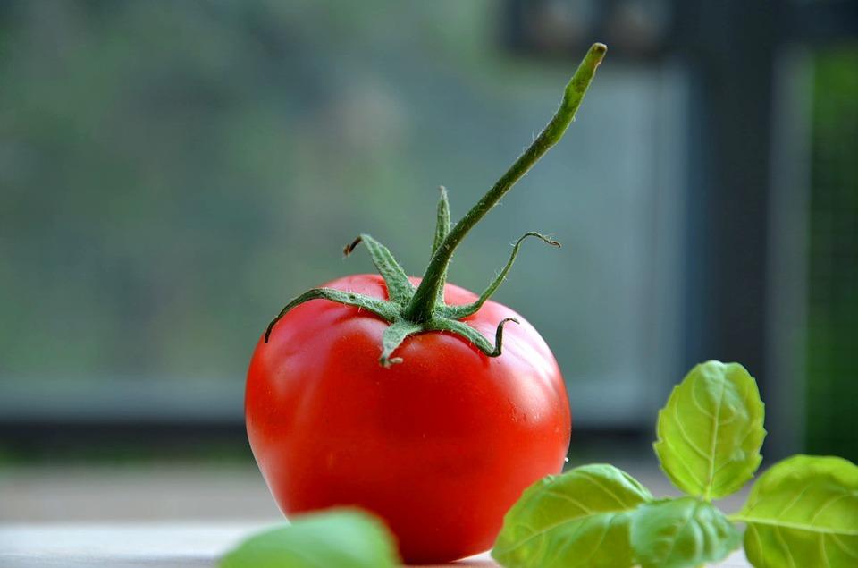 tomatoe-932737_960_720