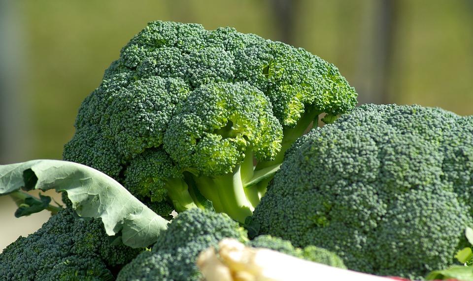 vegetables-673181_960_720