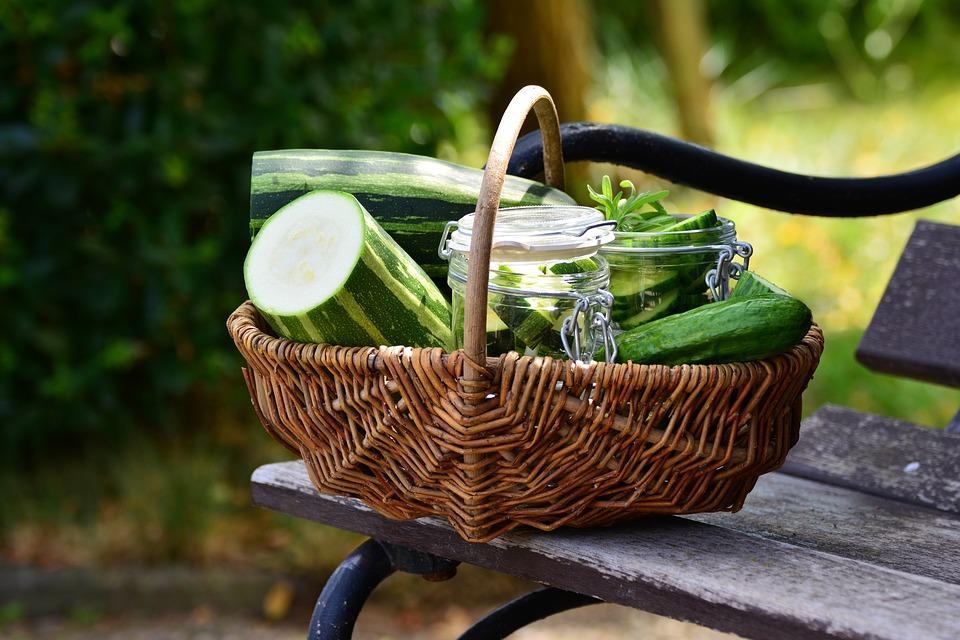 zucchini-2516229_960_720
