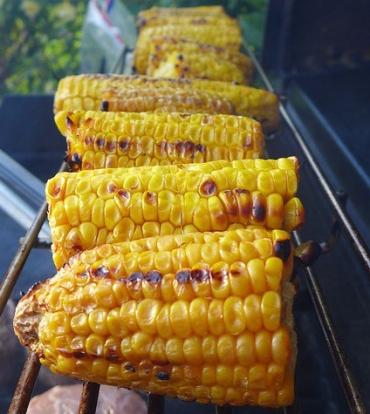 corn-on-the-cob-2548433_960_720