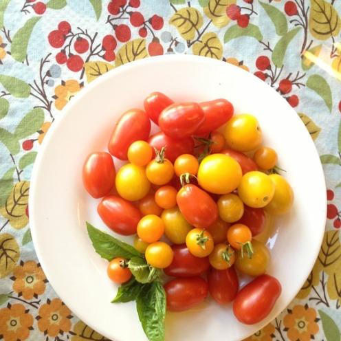 tomatoes-687085_960_720