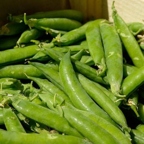 vegetables-780528_960_720