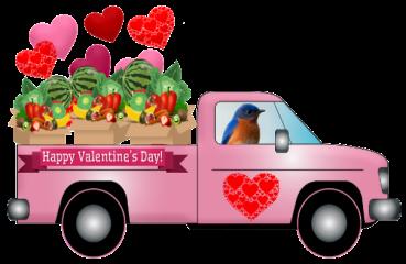 bluebird valentine truck