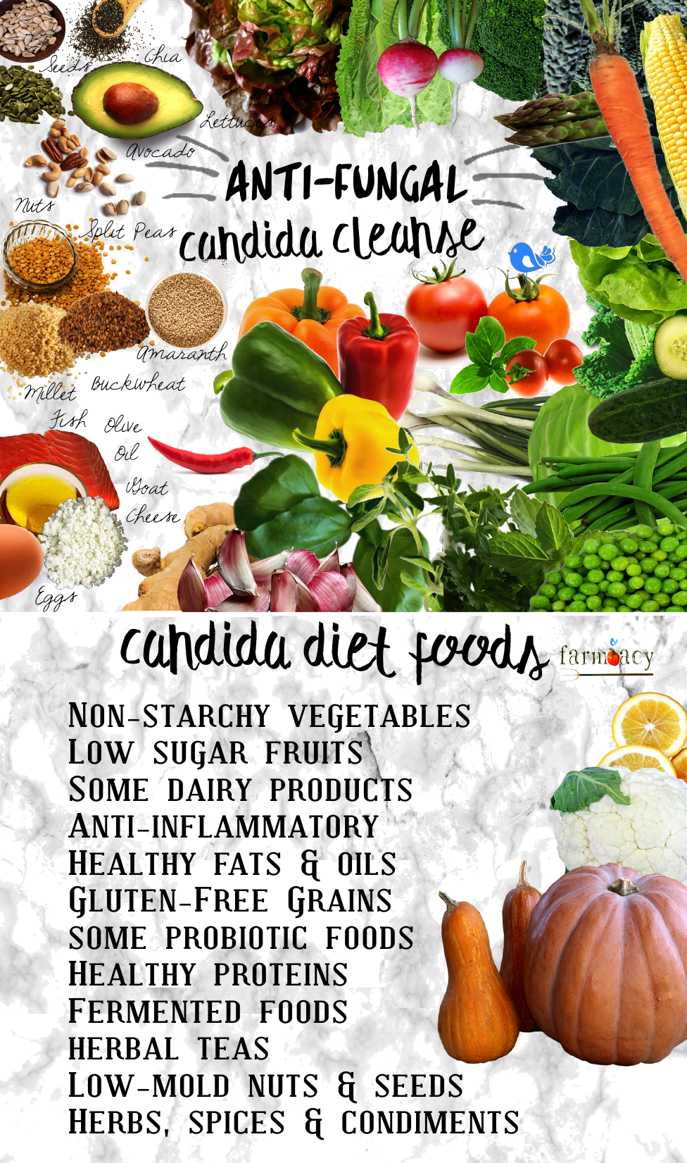 CANDIDA DIET CLEANSE