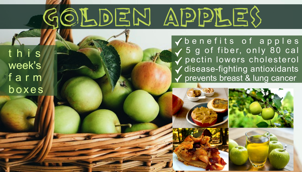 golden apple benefits png