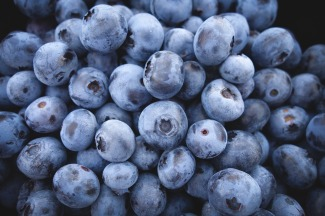 tmp_21231-blueberries-690072_1280-789043685.jpg