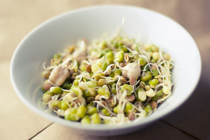 soybean-933026_960_720