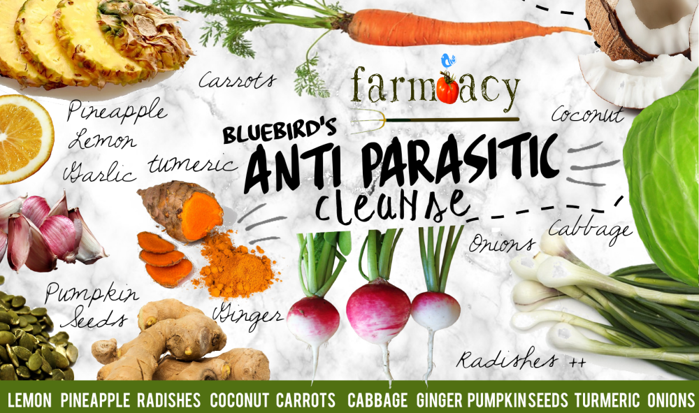anti parasitic cleanse farmacy