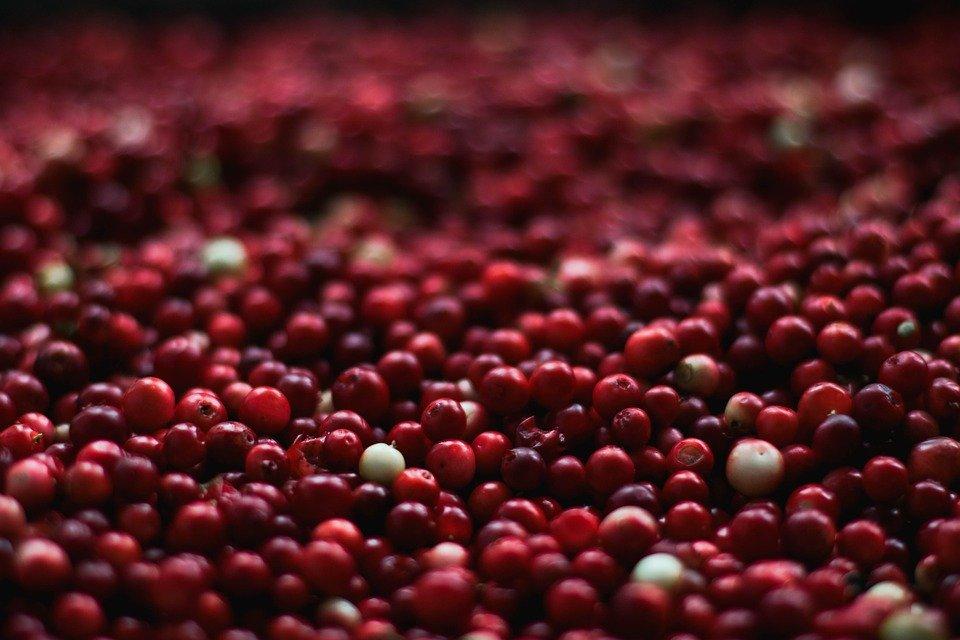 berries-1851161_960_720