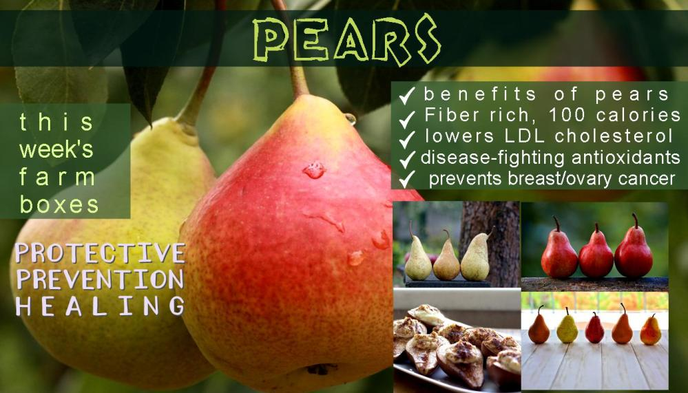 pear benefits